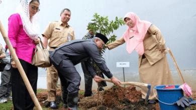 Target RTH 30 Persen Terus Dikebut Pemkot Depok